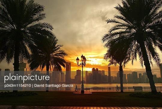 p343m1154210 von David Santiago Garcia