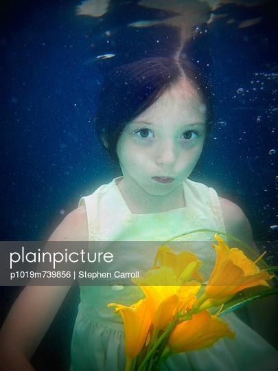 Underwater - p1019m739856 by Stephen Carroll