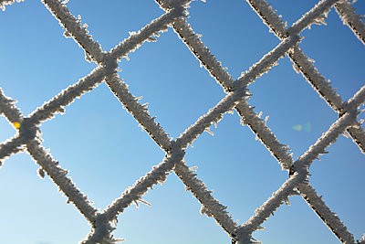 wire mesh fence with ice crystals - p876m1424694 by ganguin
