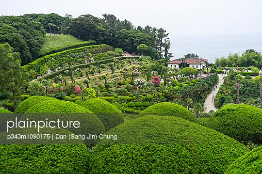 p343m1090175 von Dan (Sang Jin) Chung