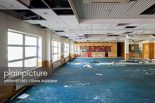 p855m971921 von Diane Auckland