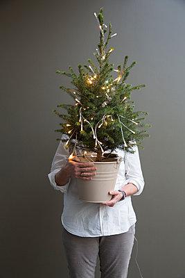 Frau hält kleinen, geschmückten Weihnachtsbaum im Arm. - p948m2014770 von Sibylle Pietrek