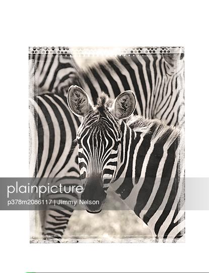 tanzania - p378m2086117 by Jimmy Nelson
