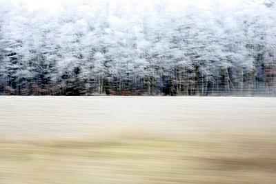 Blick aus dem Autofenster - p1258m1538713 von Peter Hamel