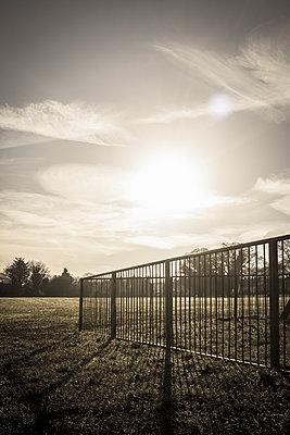 Sunrise over a park - p1228m1109091 by Benjamin Harte