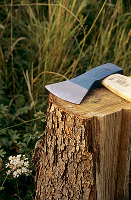 Chopping - p0850521 by Andreas Pieper