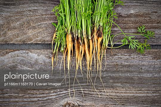 p1166m1163170 von Cavan Images