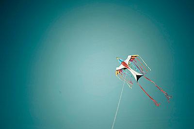 Romo, Kite flying against sky - p300m827459f by Jana Mänz