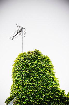 Antenna - p171m955872 by Rolau