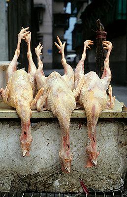 Tote Hühner mit Kopf - p2370445 von Thordis Rüggeberg