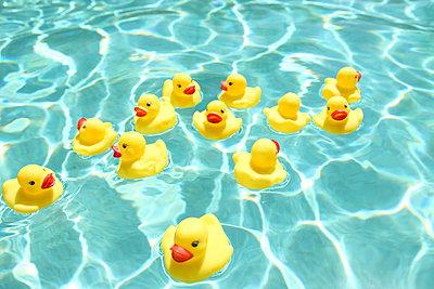 Rubber ducks - p045m902674 by Jasmin Sander