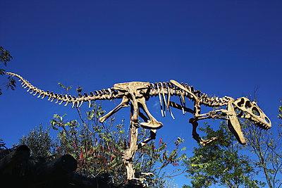 Dinosaur - p1063m956183 by Ekaterina Vasilyeva