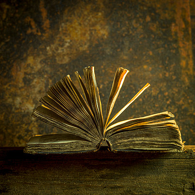 Old book - p813m1465507 by B.Jaubert