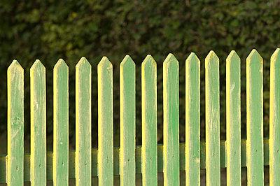 Grüner Zaun - p1781052 von owi