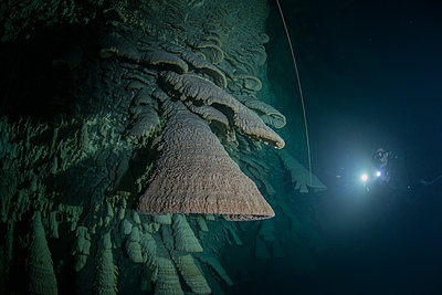 Scuba diver exploring unique natural formations known as bells in submerged caves beneath the jungle - p429m1418495 by Rodrigo Friscione