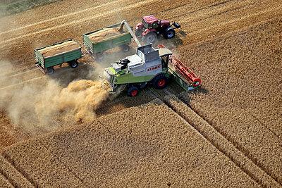 Getreideernte - p1016m2064634 von Jochen Knobloch