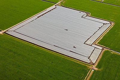 Folien auf dem Feld - p1120m1004299 von Siebe Swart