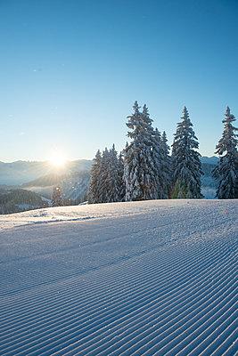 Winterlandschaft - p1142m1496424 von Runar Lind