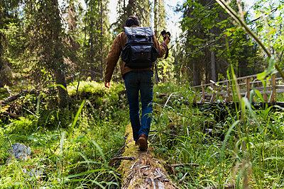Finland, Lapland, man walking on log in forest - p300m2060723 by Kike Arnaiz