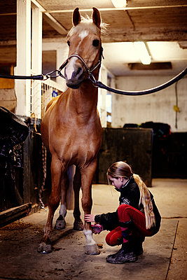 Mädchen putzt ein Reitpferd - p972m1333491 von Felix Odell