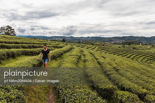 p1166m2084434 von Cavan Images