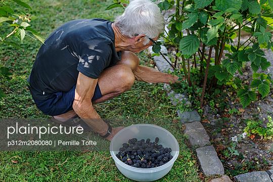 p312m2080080 von Pernille Tofte