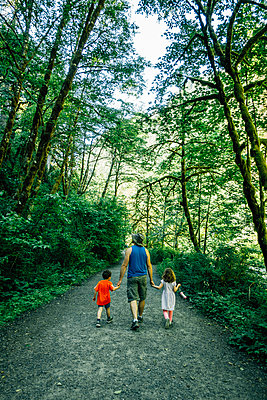 Rear view of father holding children's hands while walking amidst forest - p1166m1547042 by Cavan Images