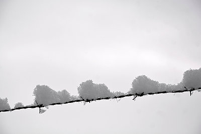 Keep out! - p876m1000525 by ganguin