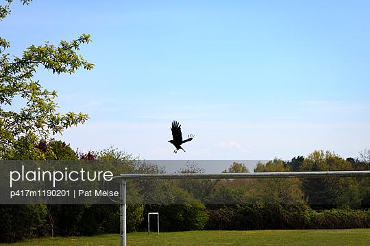 Fußballplatz - p417m1190201 von Pat Meise