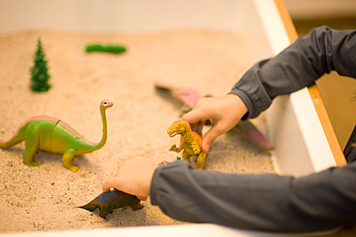 Playing with dinosaurs - p5980049 by Patricia Seibert