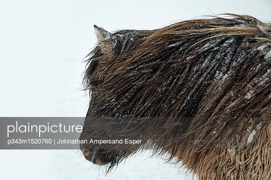 p343m1520760 von Johnathan Ampersand Esper