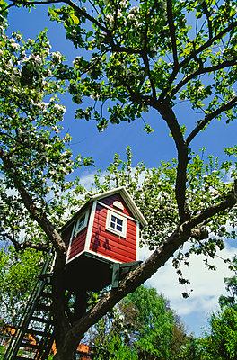 Baumhaus in der Höhe - p1053m2086632 von Joern Rynio