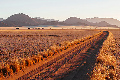 Dirt road in the desert - p1065m885963 by KNSY Bande