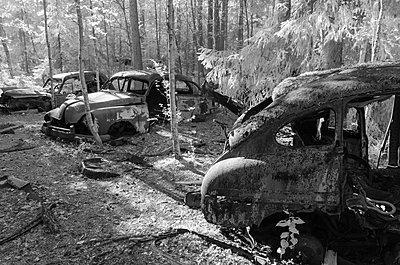 Autofriedhof - p1463m2192664 von Wolfgang Simlinger
