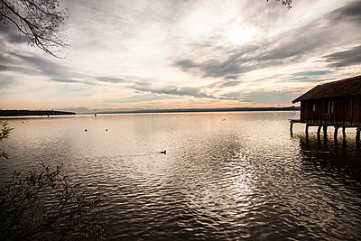 Evening mood on lakeside - p913m1044434 by LPF