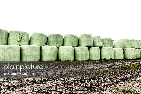 Silage bales - p1523m2064351 by Nic Fey