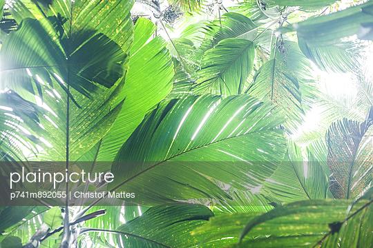 Grün - p741m892055 von Christof Mattes