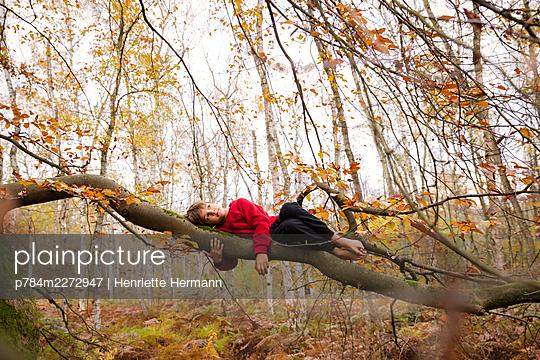 Boy lying on a strong limb - p784m2272947 by Henriette Hermann