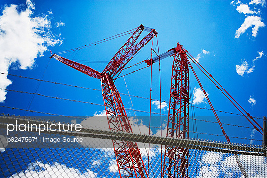 Cranes - p9247567f by Image Source