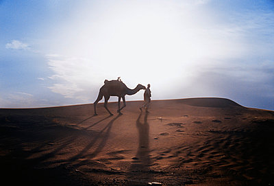 Silhouette of a Camel with guide in the Sahara Desert - p1072m829251 by Neville Mountford-Hoare