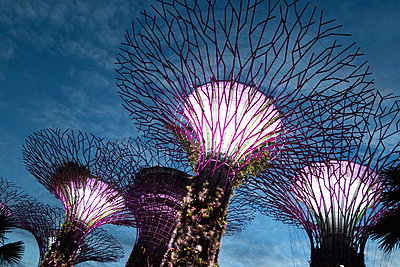 """Supertrees"" in Singapore - p795m1461525 by JanJasperKlein"