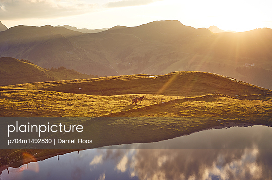 p704m1492830 by Daniel Roos