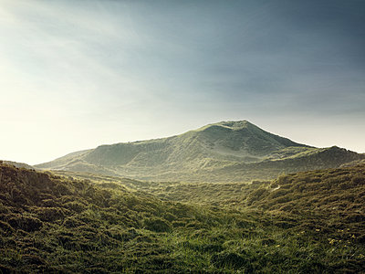 Dune scenery on Sylt island - p1342m1332661 by Sebastian Burgold