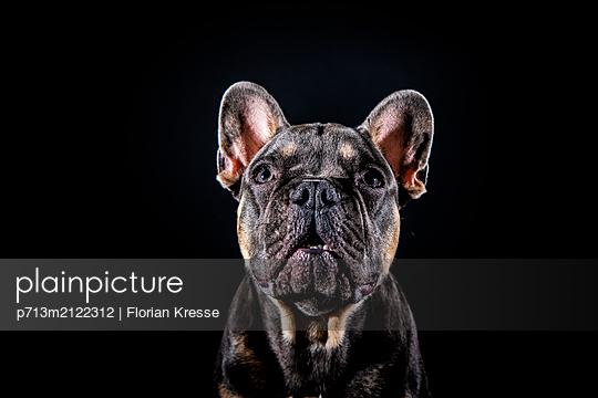 p713m2122312 by Florian Kresse