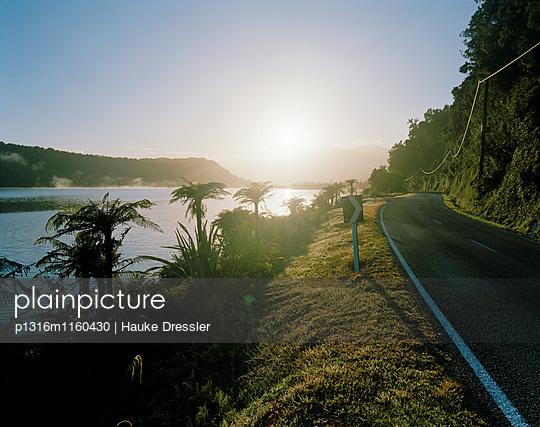 Highway 6 und Lake Wahapo bei Sonnenaufgang, Westland Nationalpark, Westküste, Südinsel, Neuseeland - p1316m1160430 von Hauke Dressler