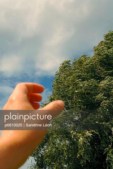 Hand catching a tree - p6810025 by Sandrine Léon