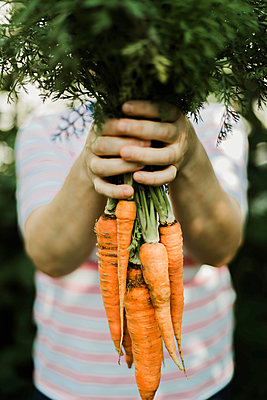 Woman holding a bunch of carrots. - p1166m2088635 by Cavan Images