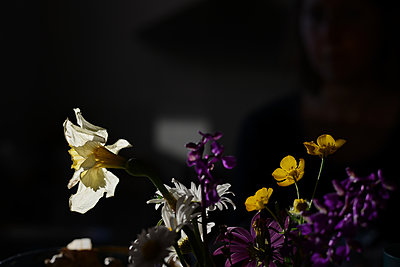 Cut flowers - p1631m2272346 by Raphaël Lorand