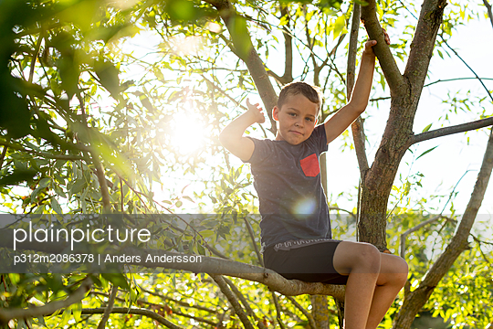 Boy playing on tree - p312m2086378 by Anders Andersson