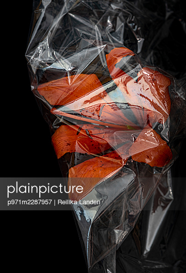 Lily wrapped in plastic foil - p971m2287957 by Reilika Landen